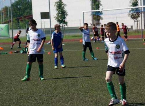 Runda finałowa Ligi Mistrzów Koziołka